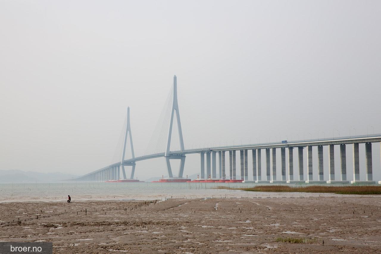 bilde av Xiangshan Harbor Bridge