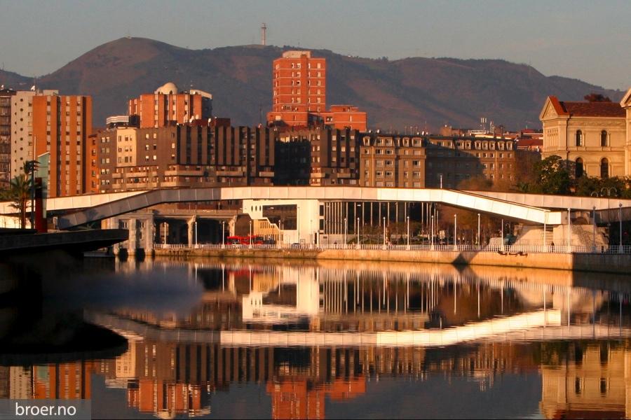 picture of Padre Arrupe Bridge