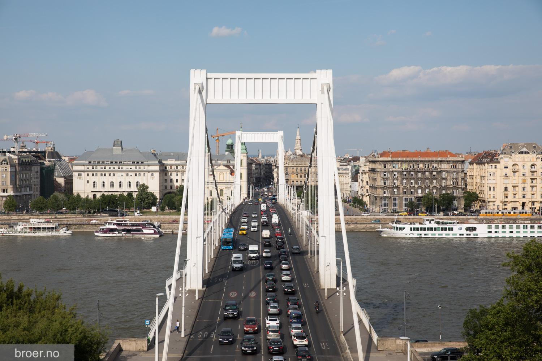 bilde av Elisabeth Bridge