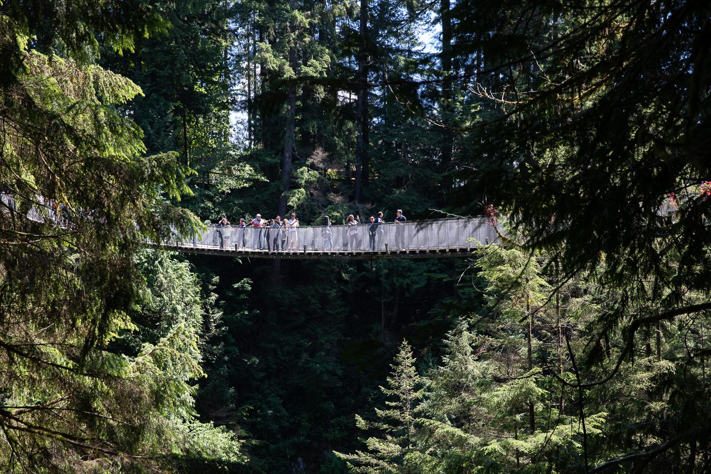 picture of Capilano Suspension Bridge
