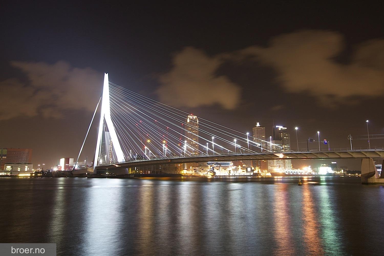 picture of Erasmus bridge