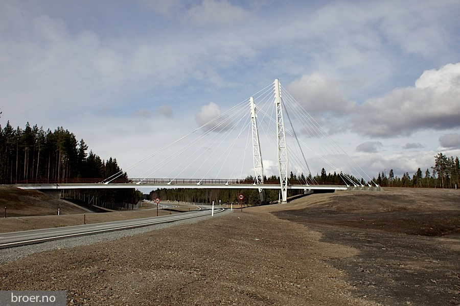 picture of Kolomoen Bridge