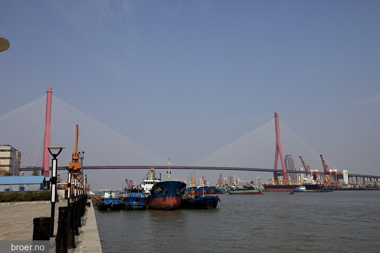 picture of Yangpu Bridge